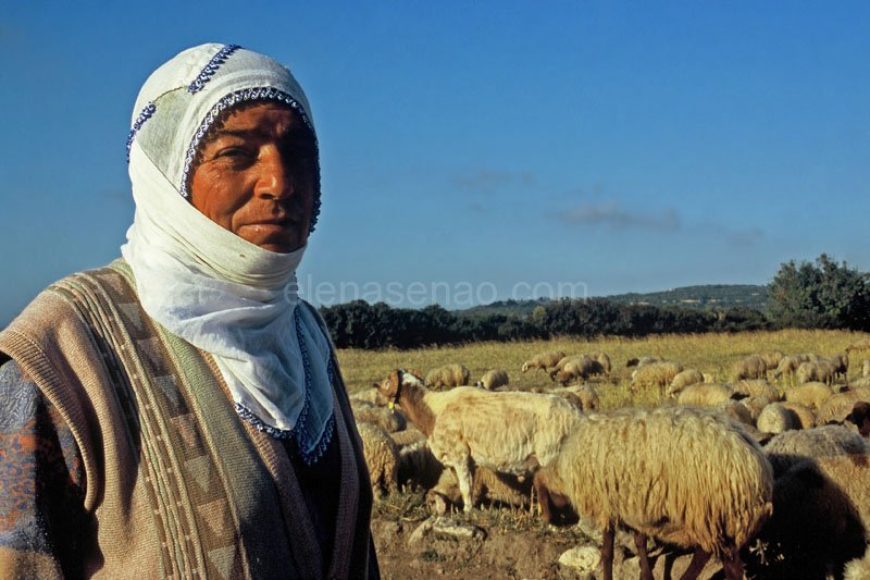 Farmer in Karpaz peninsula